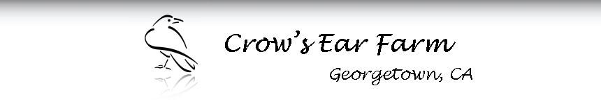 Crow's Ear Farm