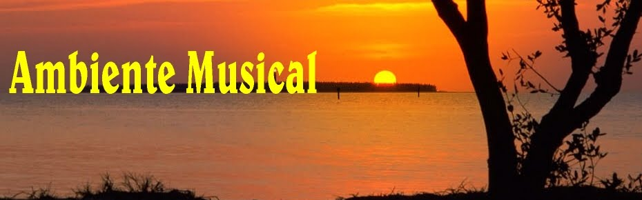Ambiente Musical Vitoko