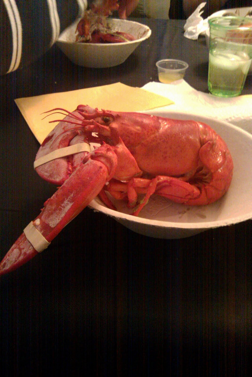 lobster eat me