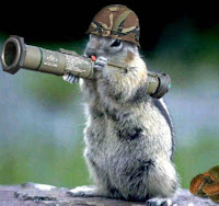 Squirrel with a bazooka