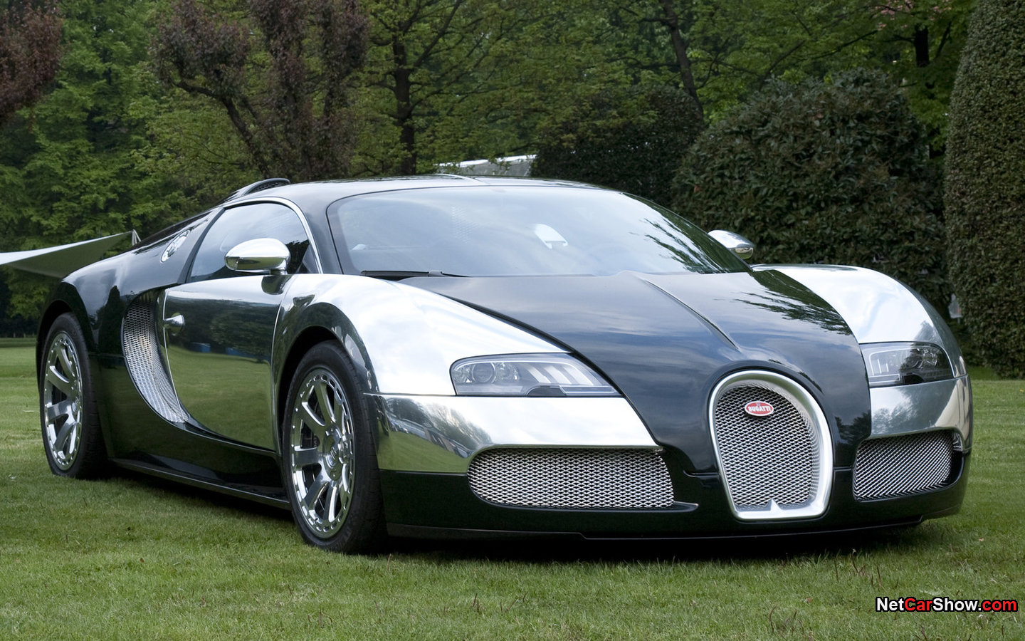obi 39 s world wide web of cars the veyron before the super sport. Black Bedroom Furniture Sets. Home Design Ideas