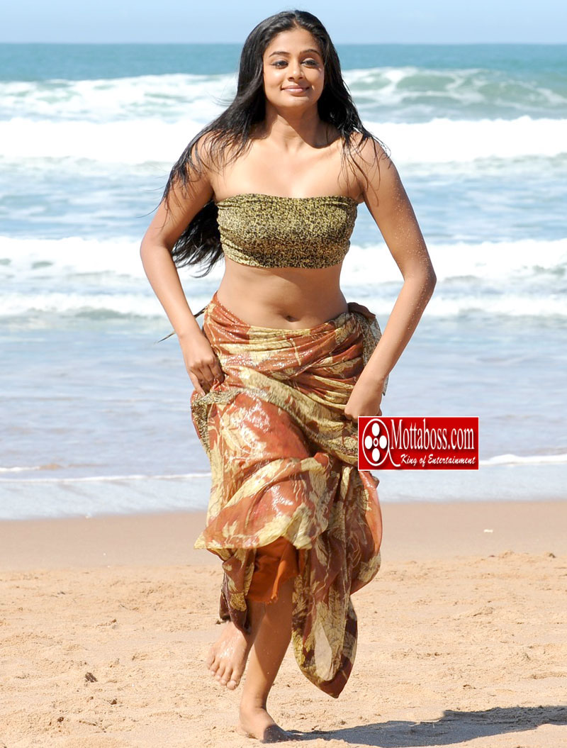Sexy actress Priyamani Navel pictures, Sexy Unseen Photos, Hot ...