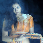 Namitha in Orange Saree Photo Gallery
