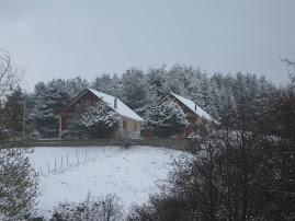 La prima neve in Sila 15 ottobre 2009  ore 13,50