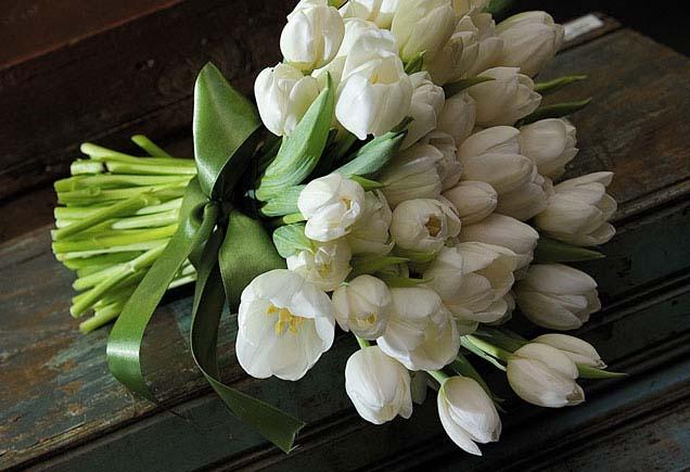 Florista da Esquina DAMAS-buque-tulipas-brancas