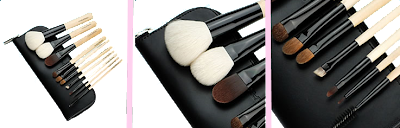 10 piece deluxe brush set