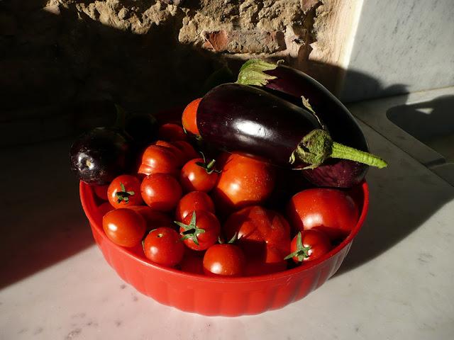 Raccolto del giorno: pomodori, melanzane, cetrioli, cipolle, tutti dal nostro orto biologico