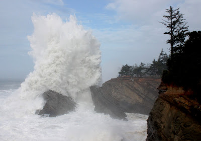 Shore Acres State Park Waves Shore Acres Wave Mesmerizing