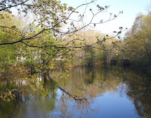 Spring Mill Pond
