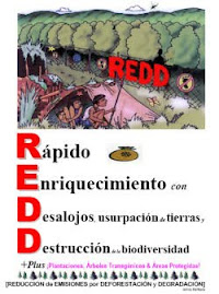 REDD Book - Spanish (PDF)