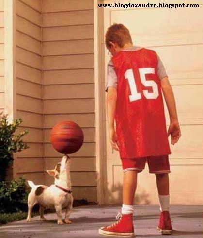 [bom-no-basquete.jpg]