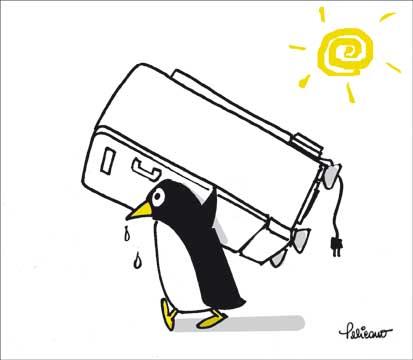 [AUTO_pelicano.jpg]