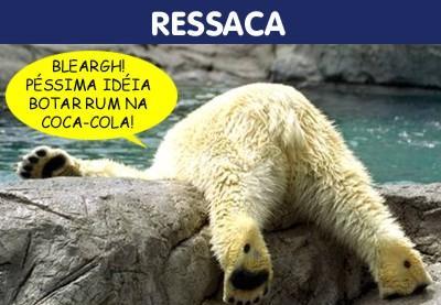 [Urso+de+ressaca.jpg]