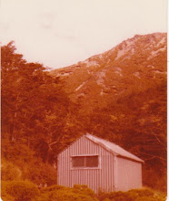 N.Z.F.S. Back ridge hut