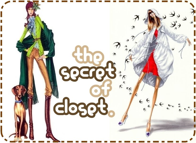 the secret of closet.