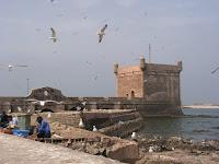 SWIRRA MOGADOR Essaouira--maroc--voyage