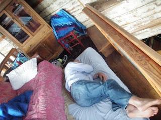 sleeping bear...