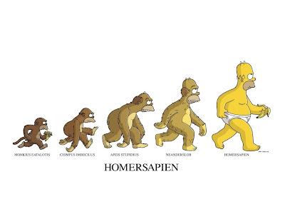 Refuting evolution essay