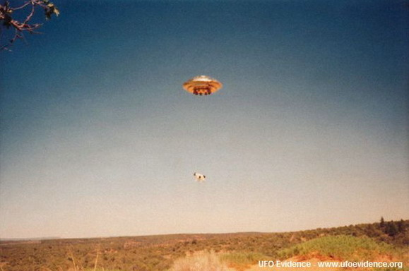1992, New Mexico