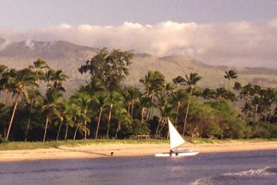 Near Waipuilani Park, Maui, Jan 2009