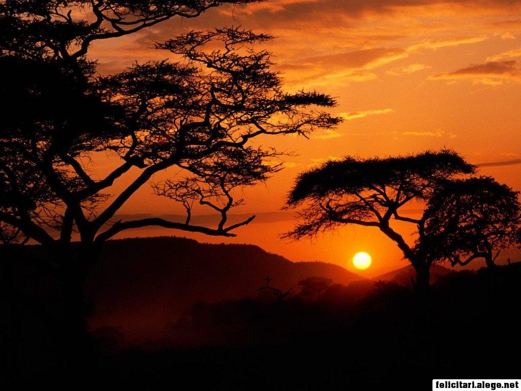 http://2.bp.blogspot.com/_XD2eX4kErAM/TF0nMnVUayI/AAAAAAAAAJA/bH_AB_jjj4k/s1600/serengeti-national-park-sunset-tanzania_1024.jpg