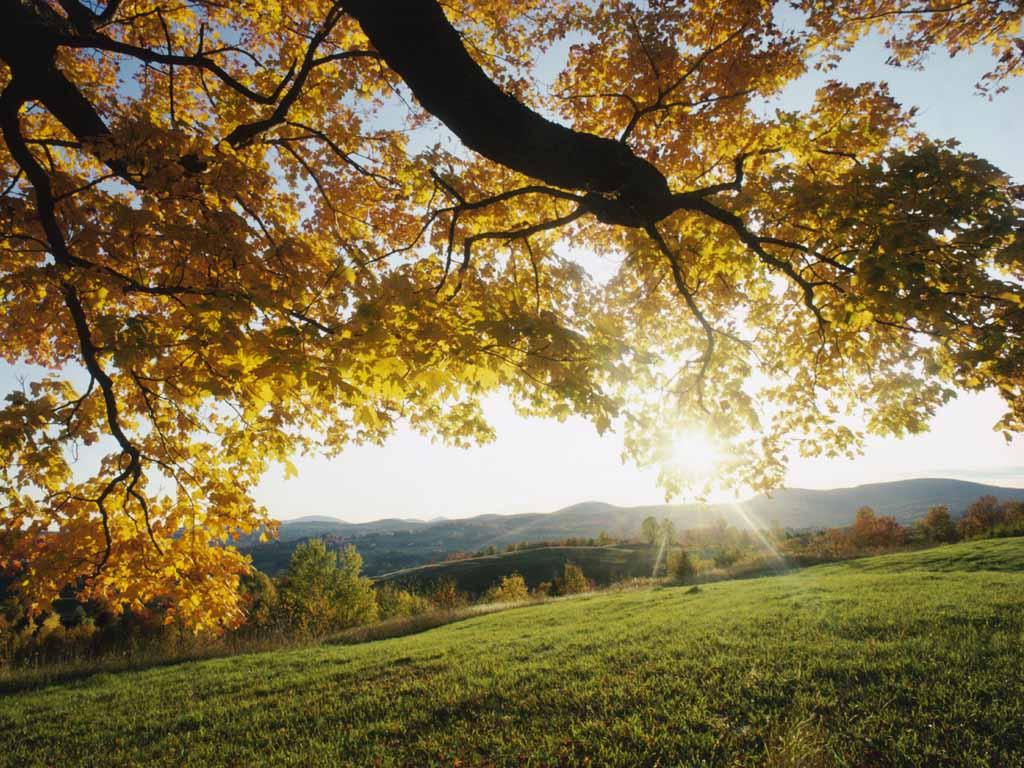 Eсенни тапети за десктоп 3