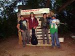 Amphicat