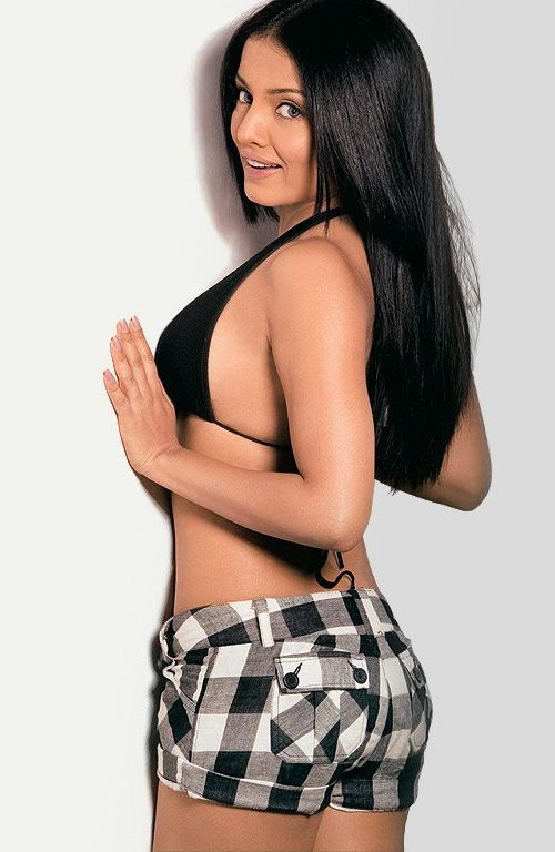 hot bollywood celina jaitley photos