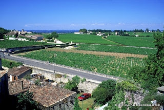View over the vines of Saint-Emilion