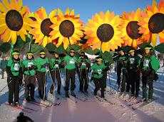2009 Sunflowers