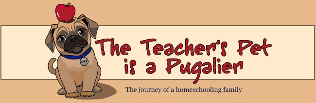 The Teacher's Pet is a Pugalier