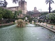 Córdoba (la de las mil culturas)