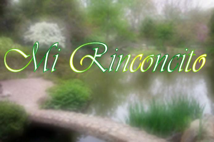 RINCONCITO VIVENCIAL