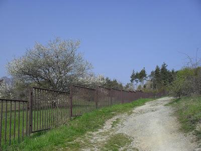 Přírodní rezervace Kamenný vrch: Cesta nahoru