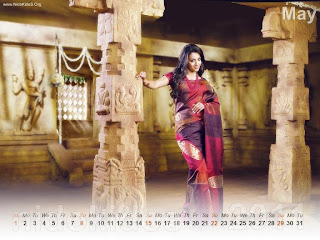 New Year 2011 Calendar, Hot Trisha Desktop Wallpapers