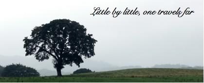 little by little, one travels far