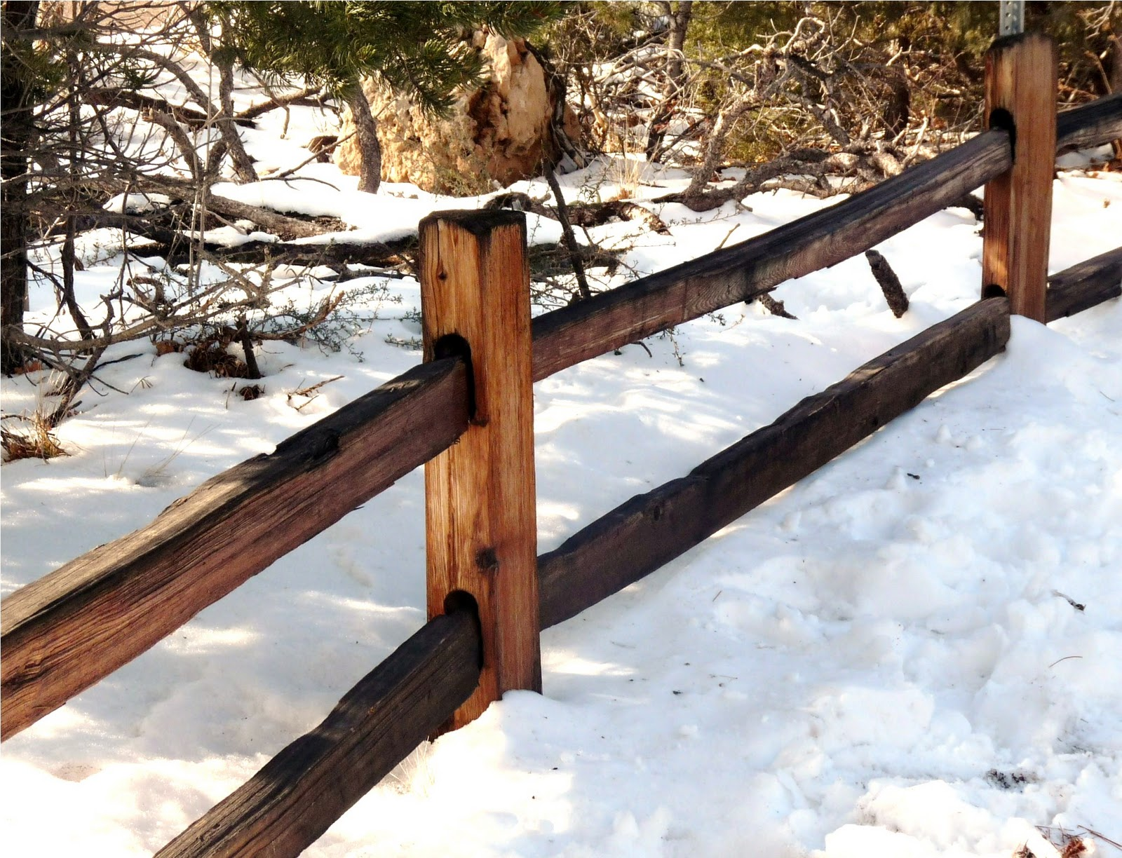 Rustic wooden fences gorgeous with attitude