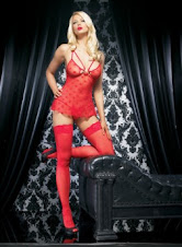 Halloween Lingerie Costumes - Hearts Mesh Minidress