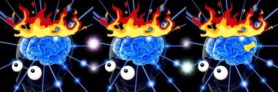 cerebro2w.JPG