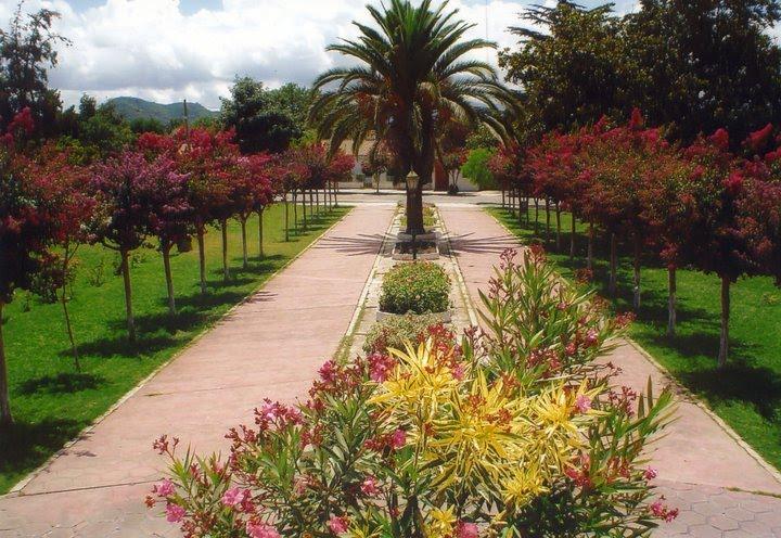 La Merced Capital de la Flor