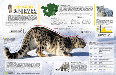 infografia, Daniel Enrique Rodriguez, universidad los liberdatores, los libertadores, fundacion, Fibrallano, Diseño Grafico