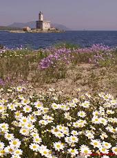 Olbia: il Faro a primavera