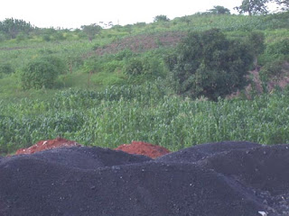 Piles of spent ore litter the jungles and grassy savannahs of the Congo.