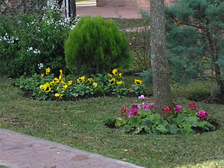 Ideas para dise ar jardines decoraci n exterior for Diseno de parques y jardines