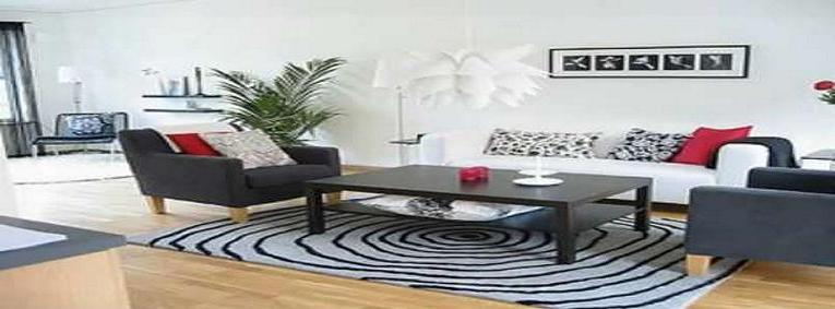 http://hogar-decoracion.blogspot.com/2010/05/ideas-para-decorar-livings-en-blanco-y.html