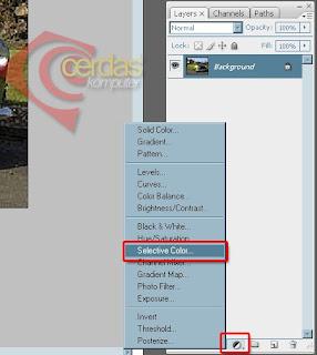 Pada Kotak Dialog Selective Color Option Atur Nialnya :