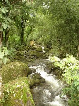 Cachoeira de Santo Aleixo