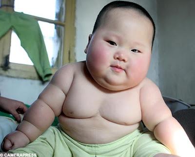 cute Fat Babies
