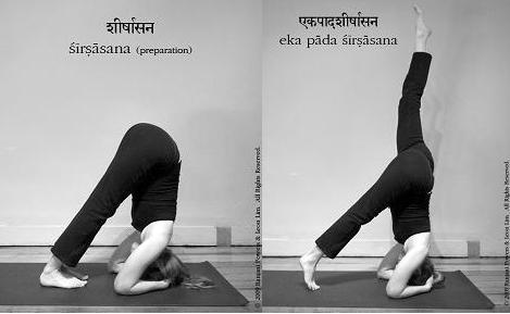 Yoga Asanas, Health Tips & Personality Development: How to do ...
