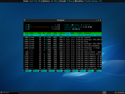 Htop Low Ram Screenshot